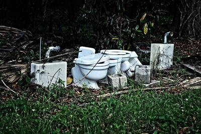 """Lawn ornaments"" in a backyard in Micanopy, FL"