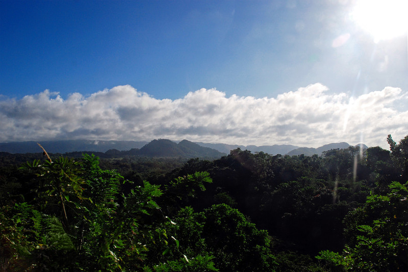 Country side in Jamaica, December 7, 2011