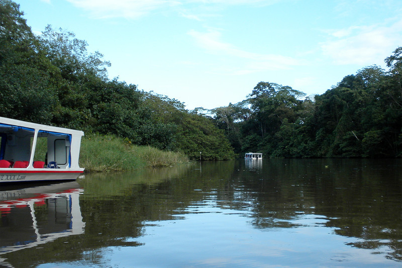 Boat ride at the Tortuguero Canals