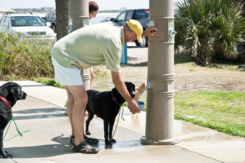 The Ponce Inlet Beach along dogs on the hiking trails and even had special spigots for getting them a drink.