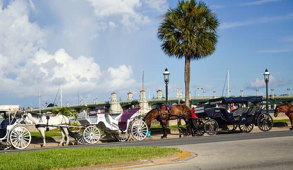 Carriage horses and drivers along the Matanza Bay