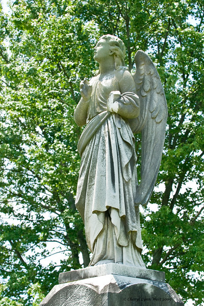 One of the angel statutes in the cemetary.