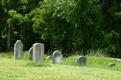 Many of the graves were in separate groups, some on the edge of the forest.