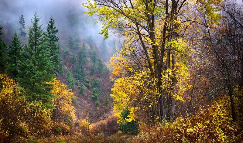 Green Mountain Fall