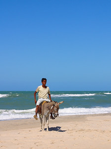 Young Brazilian boy is looking for tourists wanting to ride on his donkey, Canoa Quebrada, Ceara, Brazil, South America.