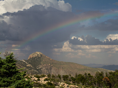 Cochise Head rainbow