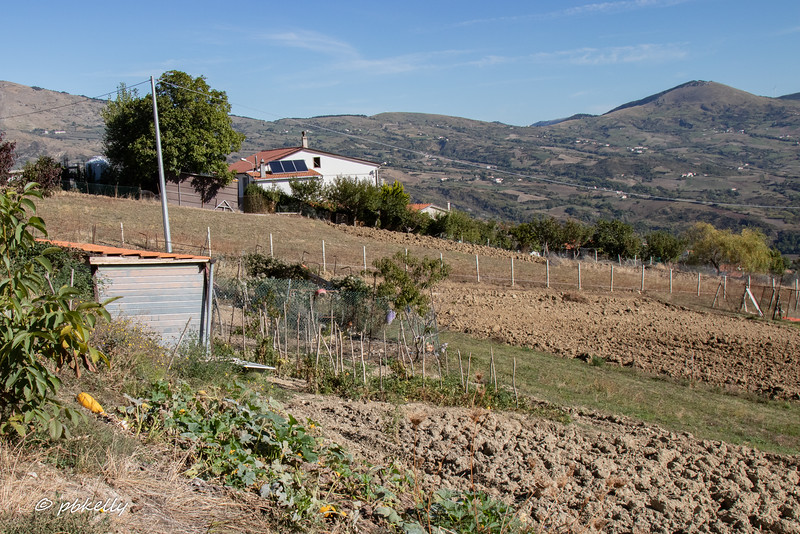 Another view of some of the vegetable patches at LaMontagna.  No flat fields here.