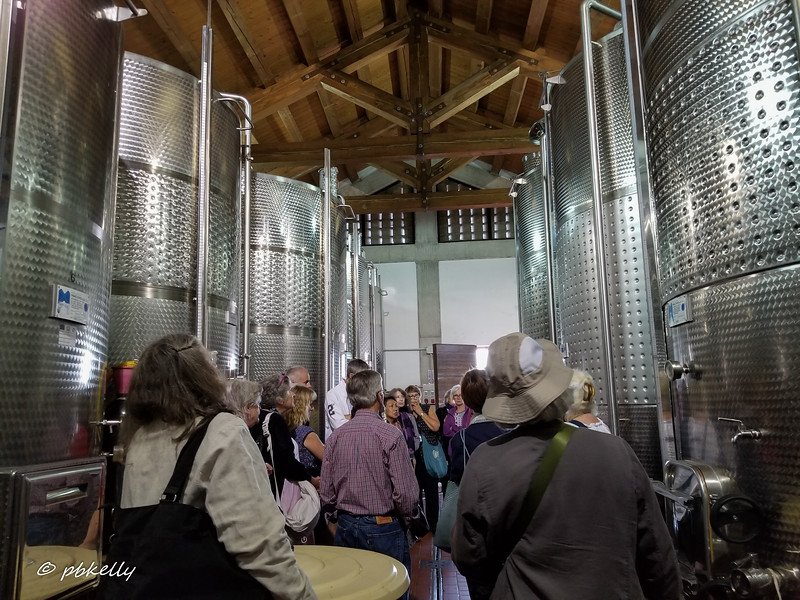Inside the winery getting a talk on how it all works!  And of course, we tasted it at dinner.