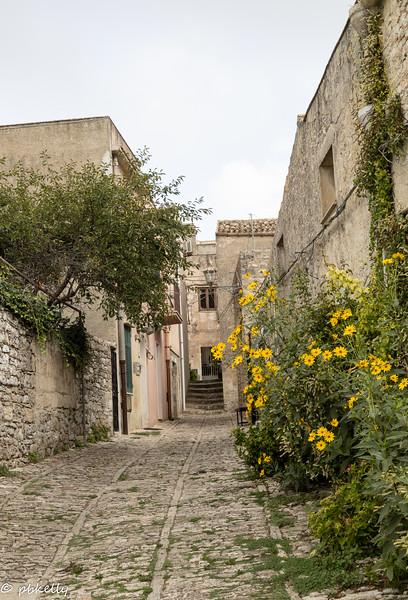 Alley with Garden.