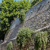 These wild plants growing out of this wall are actually Capers.  Never seen them as plants before!
