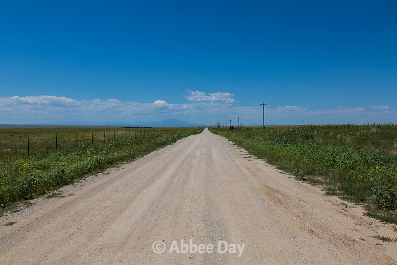 Dirt Road, CO