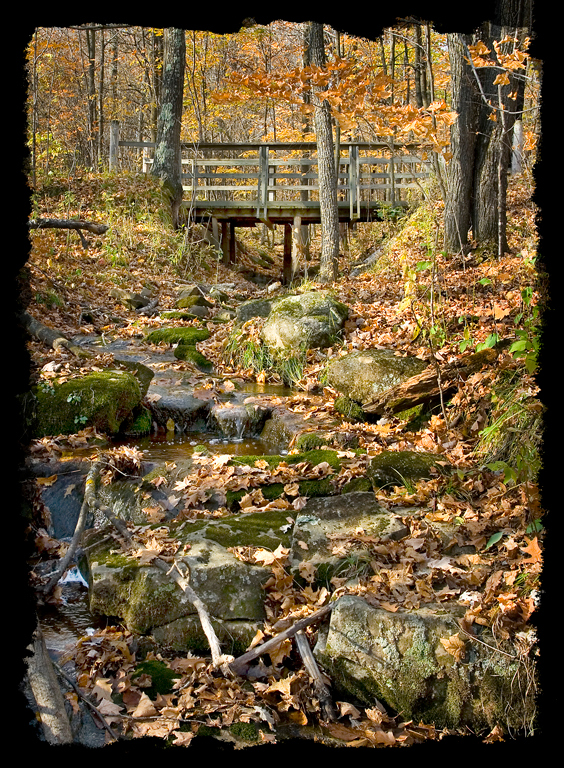 A walking bridge in Banning State Park.