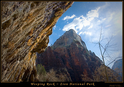 Weeping Rock in Zion National Park.