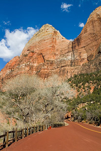 Road into Zion Canyon.