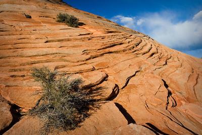 Mount Carmel????  in Zion National Park.