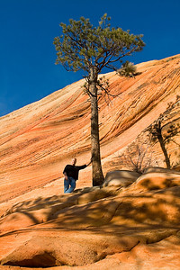 Standing by a tree on Mount Carmel in Zion National Park.