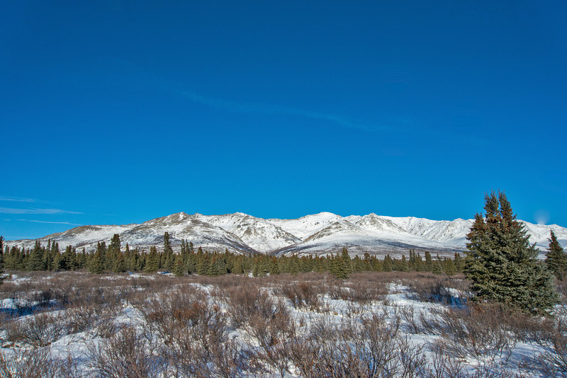 Denali National Park and Preserve.