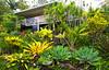 Art Gallery Garden Eumundi Queensland