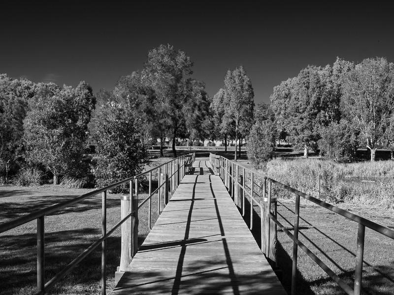 Harold Kielly Park Bald Hills mono