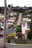 20/10/1999 - Baldwin Street, Dunedin, NZ. Steepest residential street in the world.