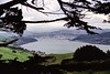20/10/1999 - Dunedin and Otago Harbour NZ