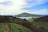 20/10/1999 - Cape Saunders, Otago Harbour, Dunedin, NZ