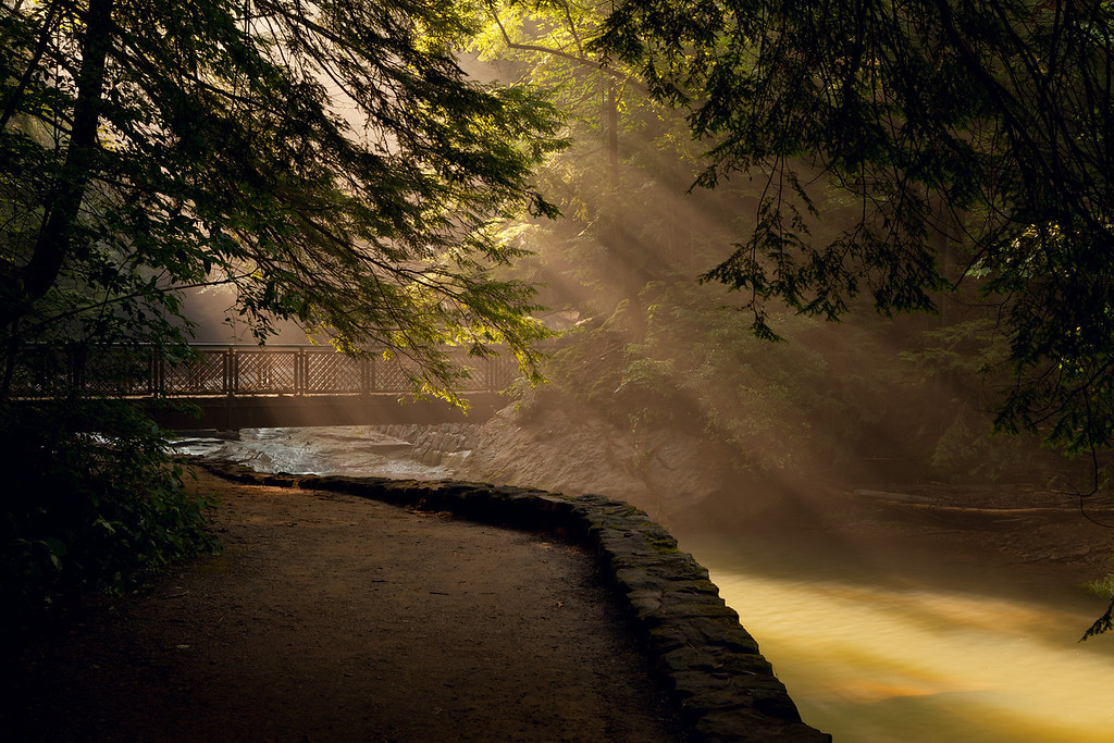 The bridge to Cedar Falls<br /> Hocking Hills State Park