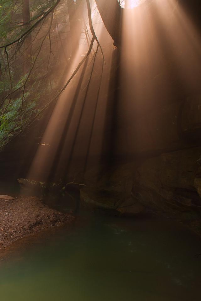 Lower Cedar Falls<br /> Hocking Hills State Park
