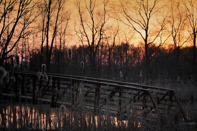 Where will this bridge lead us?