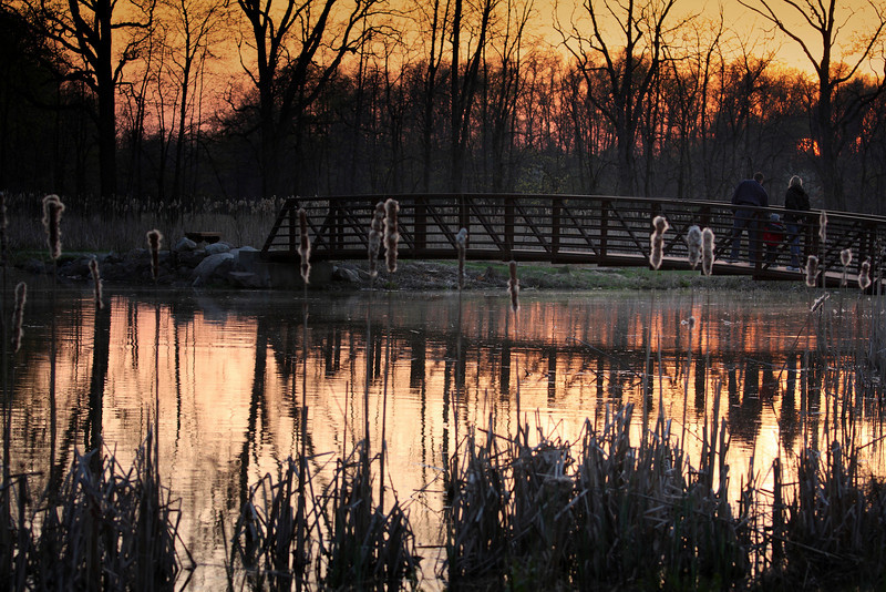 Sunset at Sandy Ridge Reservation (North Ridgeville Ohio)