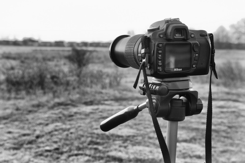 My brother Dennis' Nikon D80 getting some work this morning.