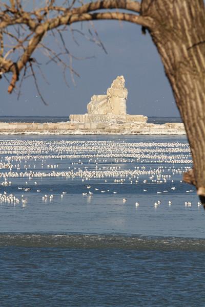 I like to frame shots.  Cleveland Harbor West Pierhead Lighthouse/Icehouse