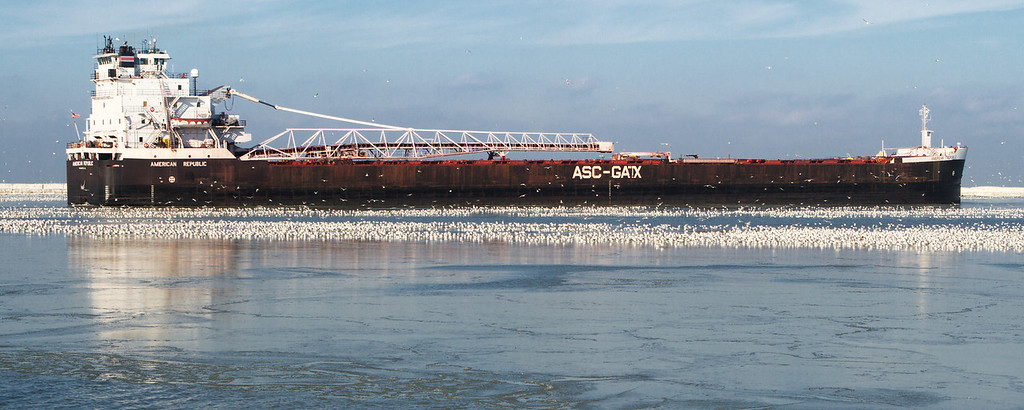 Seagulls lie in the wake of an an American Steamship Company (ASC) Freighter.  This one is somewhere between 700 and 1000 feet long.