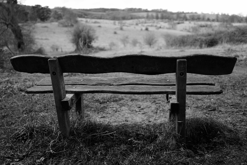Tring Park Bench
