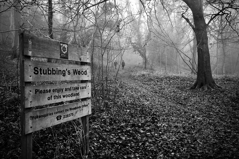 Stubbing's Wood Tring