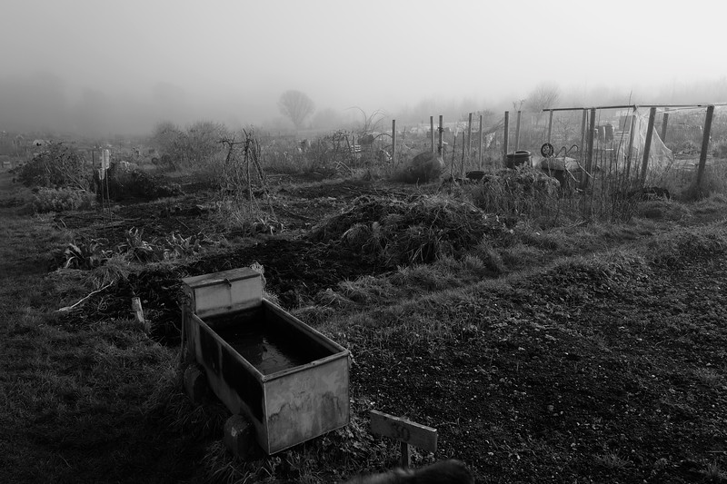 Duckmore Lane Allotments, Tring