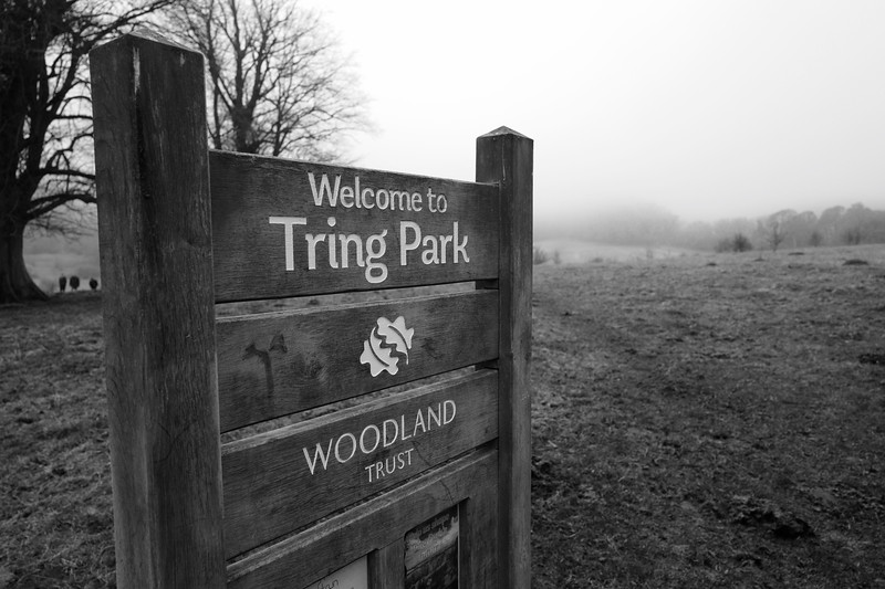 Welcome To Tring Park Sign