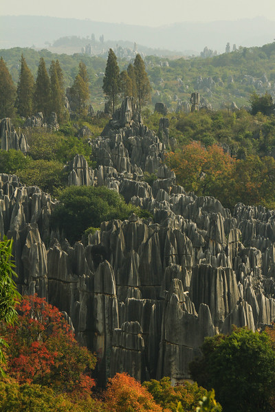 Shilin Rock Forest, Yunnan, China