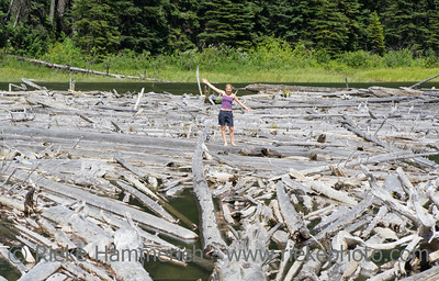Dead Trees with young woman - Duffey Lake, Coast Mountains, British Columbia, Canada