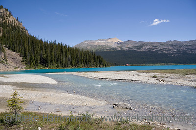 bow lake and glacial water in the canadian rockies - banff national park, canada - adobe RGB