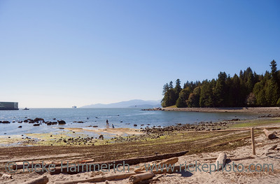 Natural Beach in Vancouver