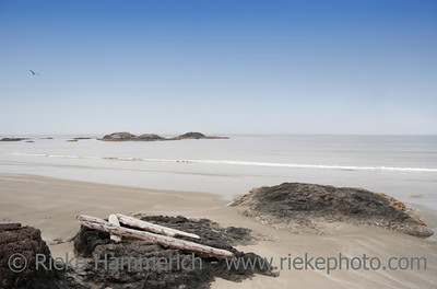 Long Beach with Driftwood and Rocks - Pacific Rim National Park, Vancouver Island, British Columbia, Canada