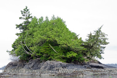 Spirit Island in the Pacific Ocean – Long Beach, Pacific Rim National Park, Vancouver Island, British Columbia, Canada