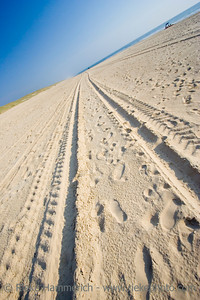tracks on a sandy beach - cote d'argent, atlantic ocean, france - adobe RGB