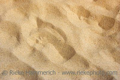 sandy beach - summer background - adobe RGB