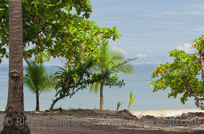 Punta Leona Beach in Costa Rica - Puntarenas province, Central Pacific Coast