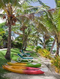 Tropical Beach with Palm Trees, Lounge Chairs and Sea Kayaks
