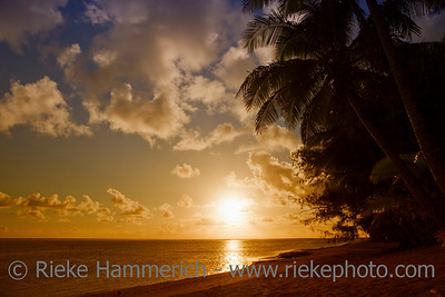 Tropical Beach with Coco Palms at Sunset