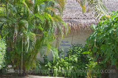 Palm-thatched Hut in a Tropical Garden