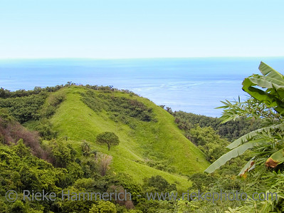 Green Hills and Landscape on the Island Tobago - west indies